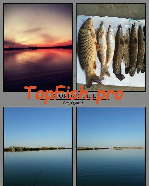 Обеспечивает клев, вызывая дикий аппетит даже у сытой рыбы. http ...