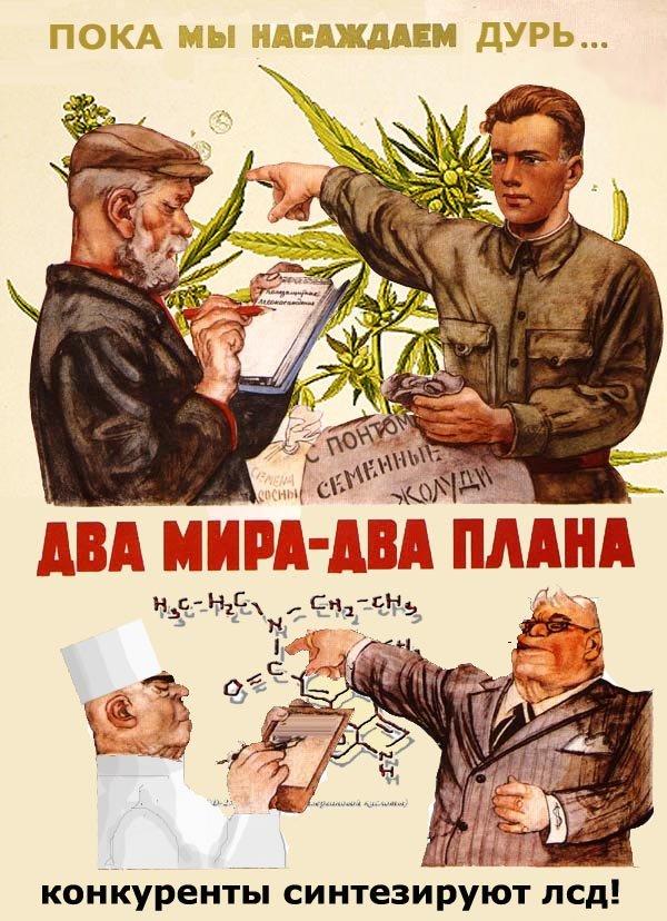 Смешные плакаты картинки, открытки днем