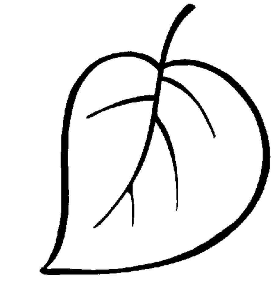 Картинка листика для раскрашивания