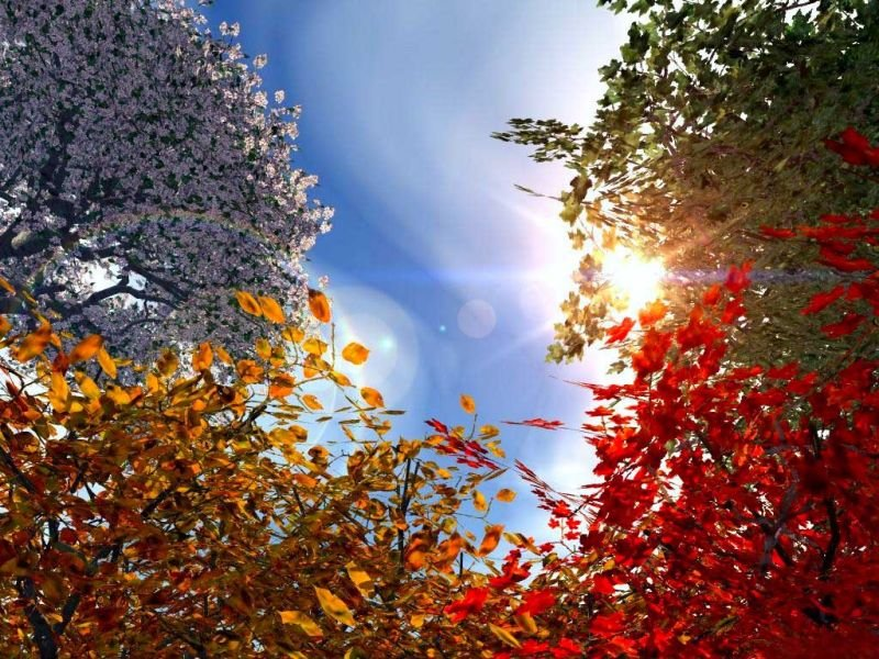 Картинки зима осень весна
