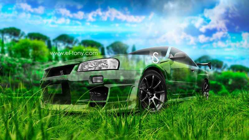 Nissan Skyline GTR R34 JDM Crystal Nature Car