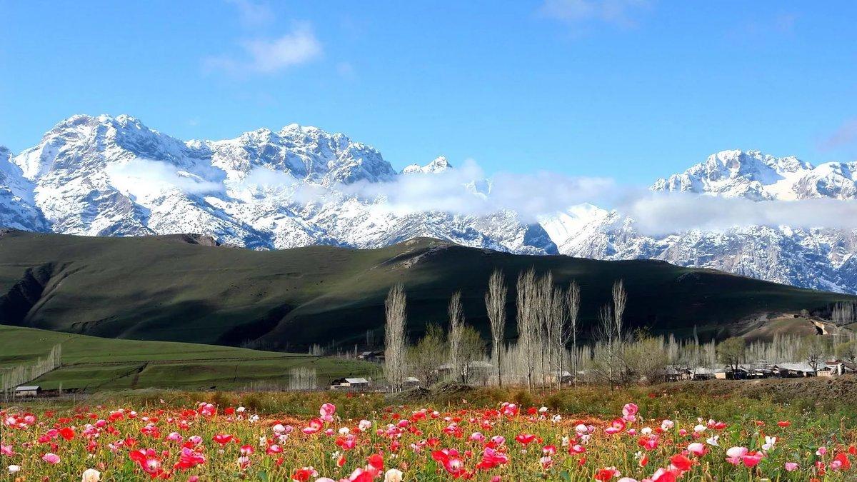 живые картинки природа кыргызстана посмотреть привыкли