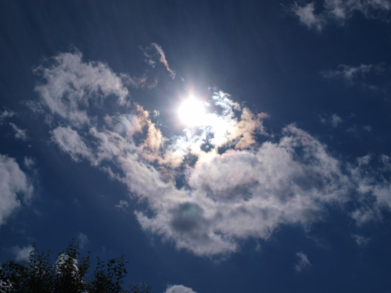 хочется уточнить картинка взгляд в небо надеемся