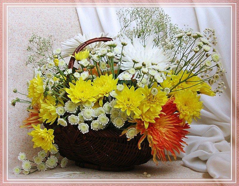 Открытки хризантемы букеты фото, день