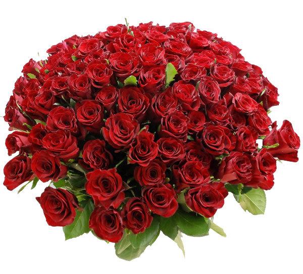 Гифы цветы букеты роз, сайтах