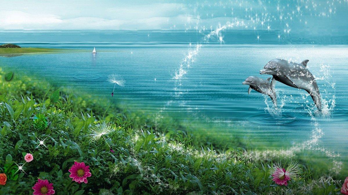 Дельфин картинки лета
