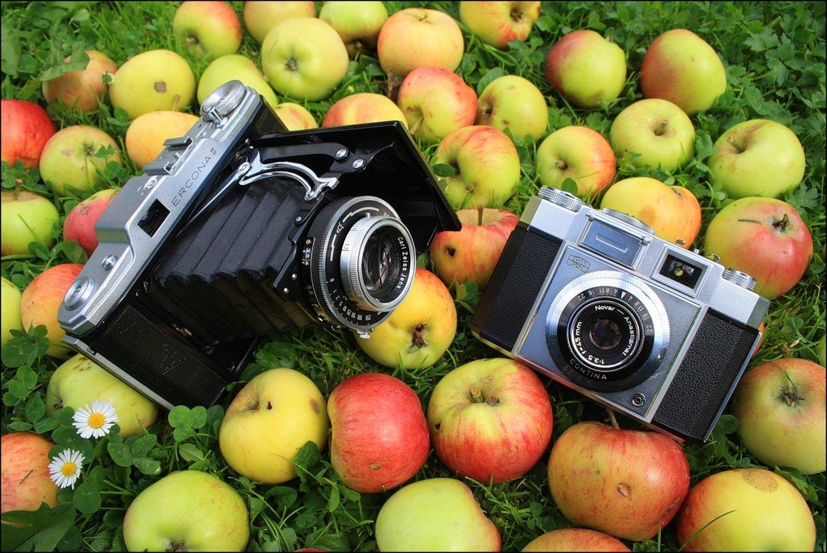 фотокамера и радуга пожелаю побывать