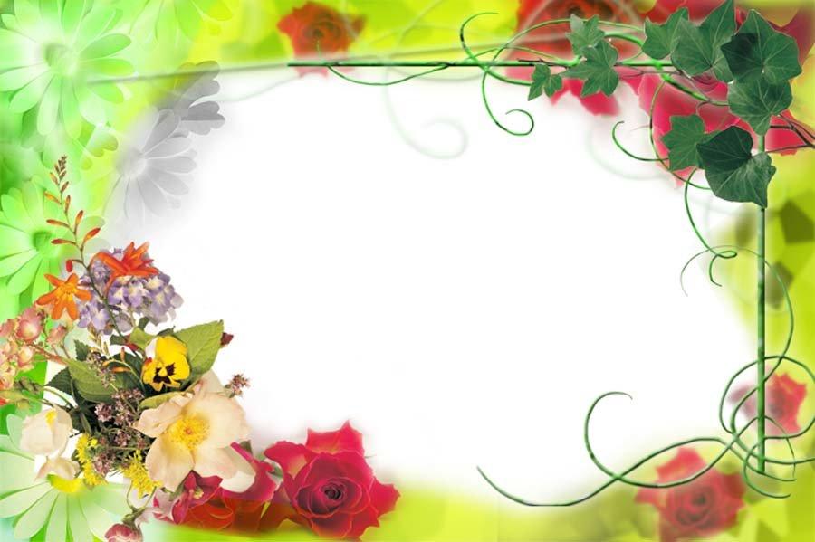 Красочные рамки для открытки, желтыми хризантемами