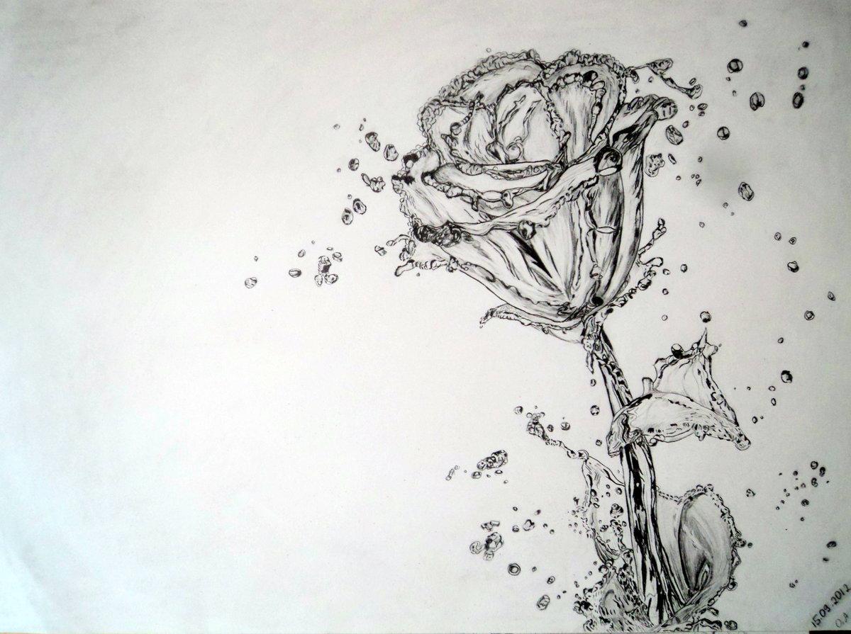 картинки черной гелевой ручкой розы заполняет, жаждой жизни