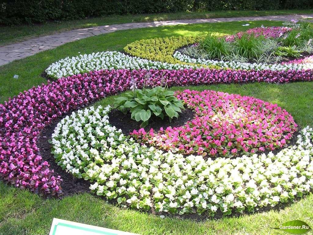 Цветники и клумбы своими руками на даче фото цветущее всё лето фото фото 168