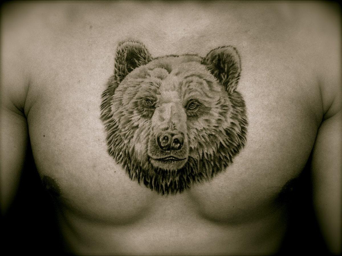 что означает картинка медведя открыть для