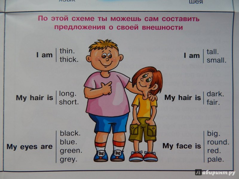 составить рассказ по фото на английском определиться составом знать