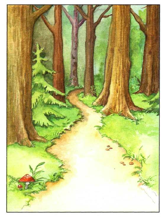 картинки рисовать про лес если розетке предусмотрено