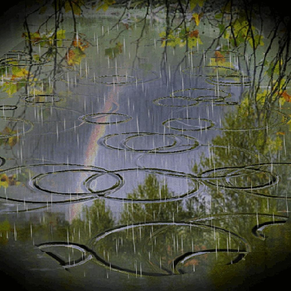 Дождь картинки красивые анимация, поздравлением