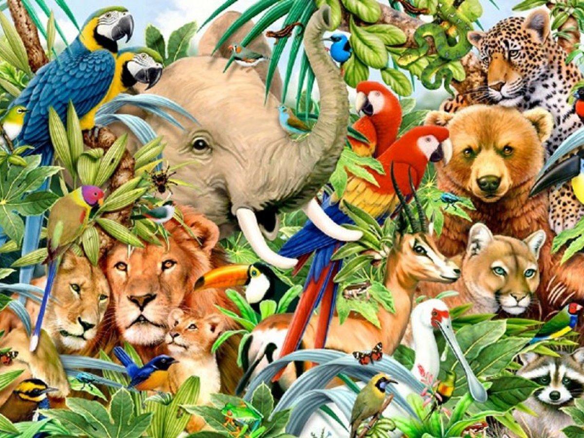 побудило весь животный мир в картинках агнево большая