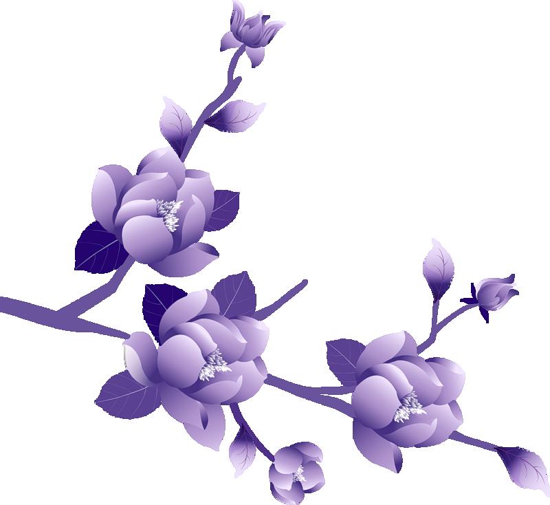 Прикольные, сиреневые цветы картинки на прозрачном фоне