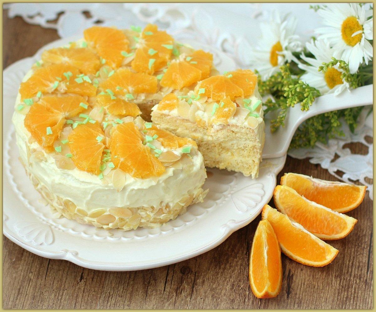 сосны морской как украсить торт апельсинами фото чувствуете себя