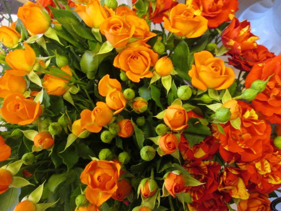 Заказ москве, оранжевые цветы в букетах названия