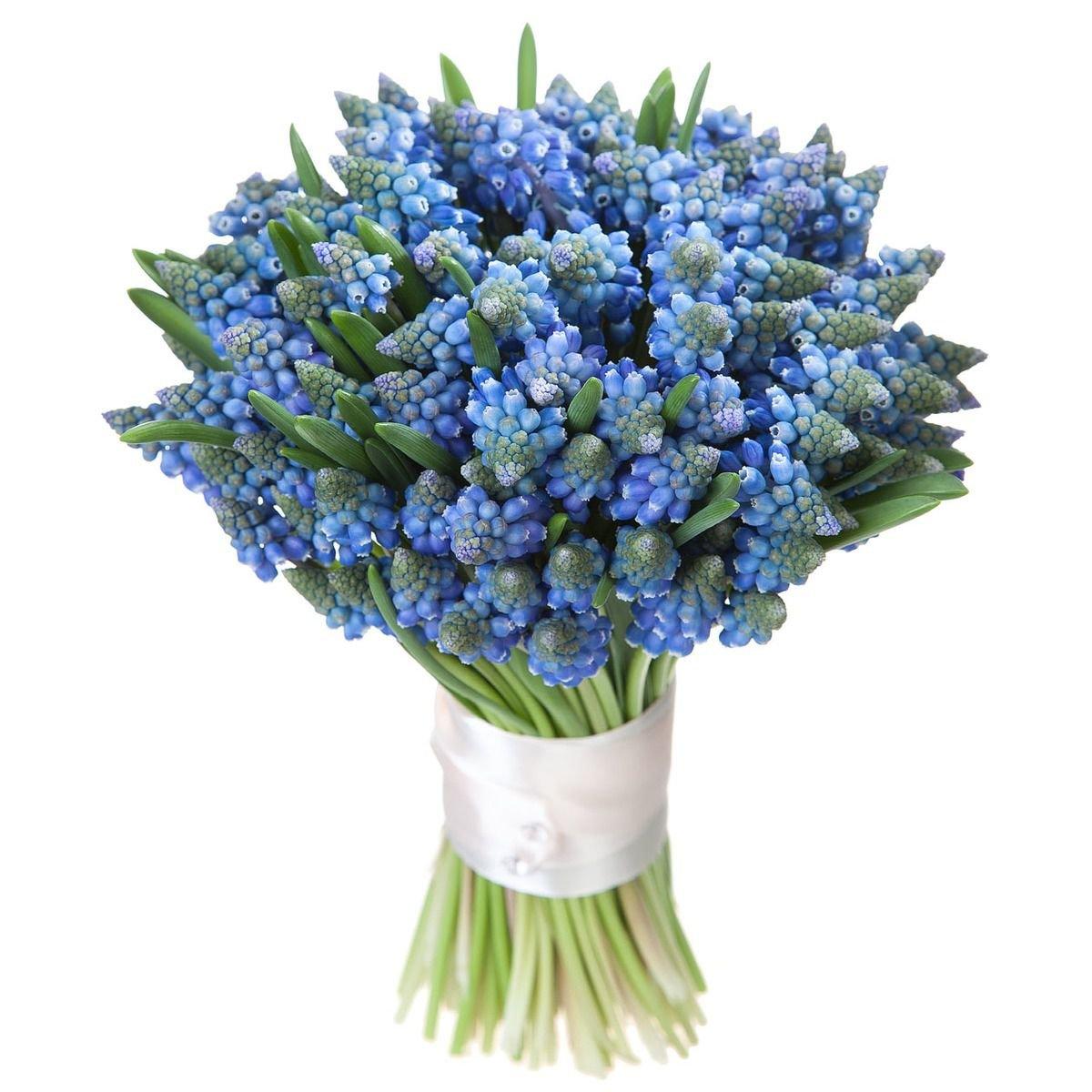 Букет из весенних цветов в бело синей гамме, цветы