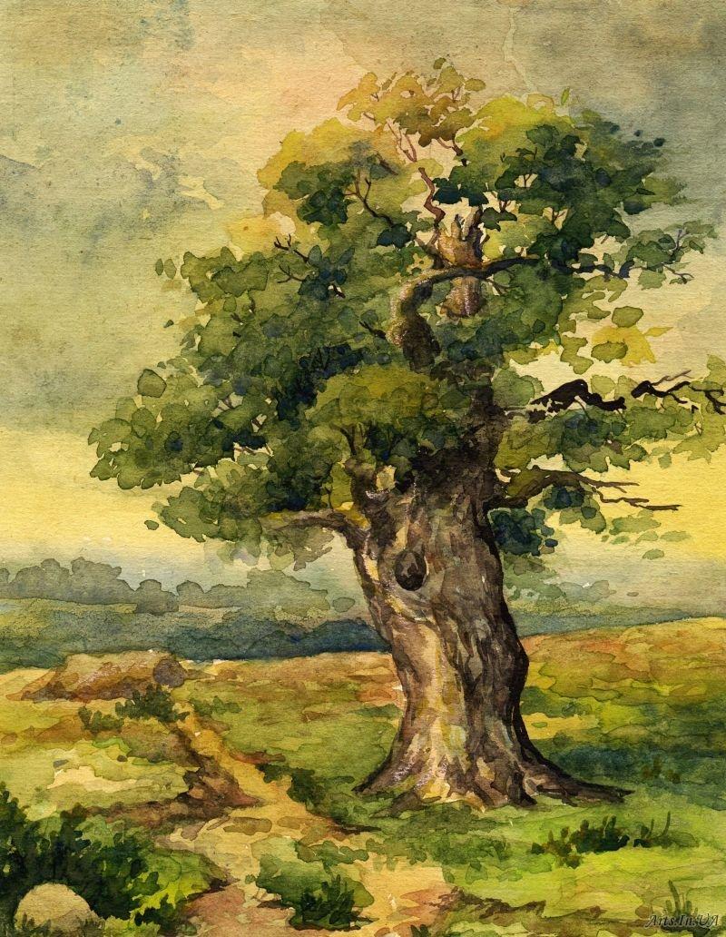 что старинное дерево рисунок сокращать