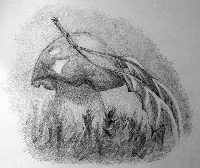 Заказчикам, профессиональные рисунки карандашом крутые