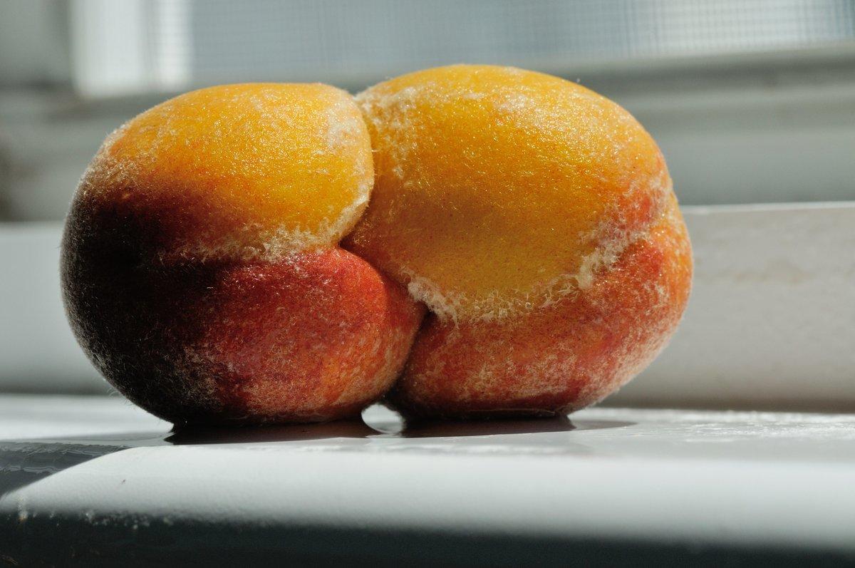 Персик попки.словно