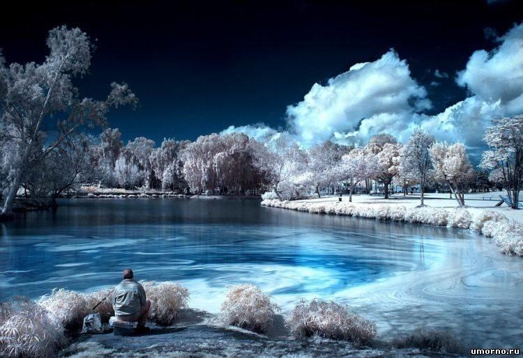 природа фото яндекс