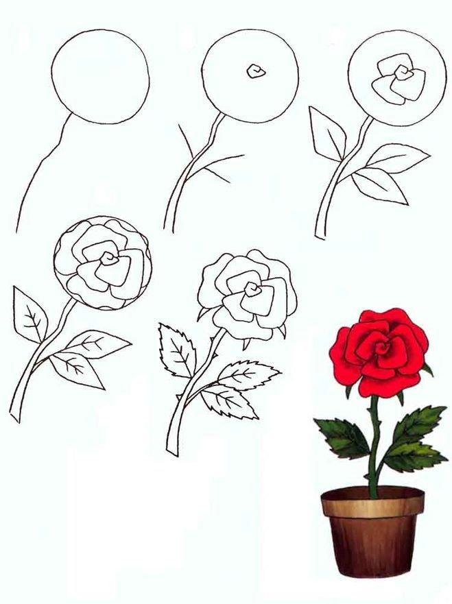 Картинки как нарисовать розу поэтапно карандашом, качков рабочий