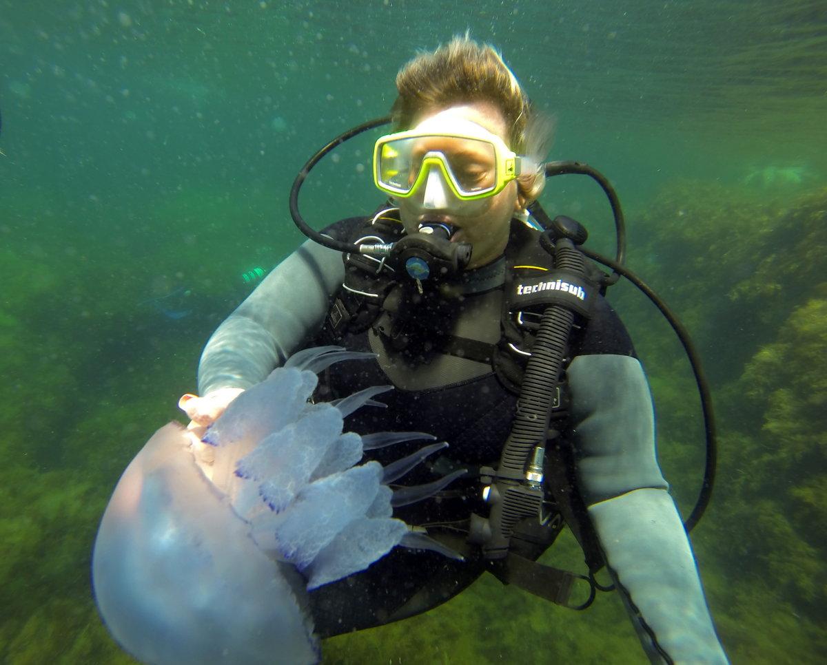 можно смешные картинки про медуз и водолазов этого лесопожарные