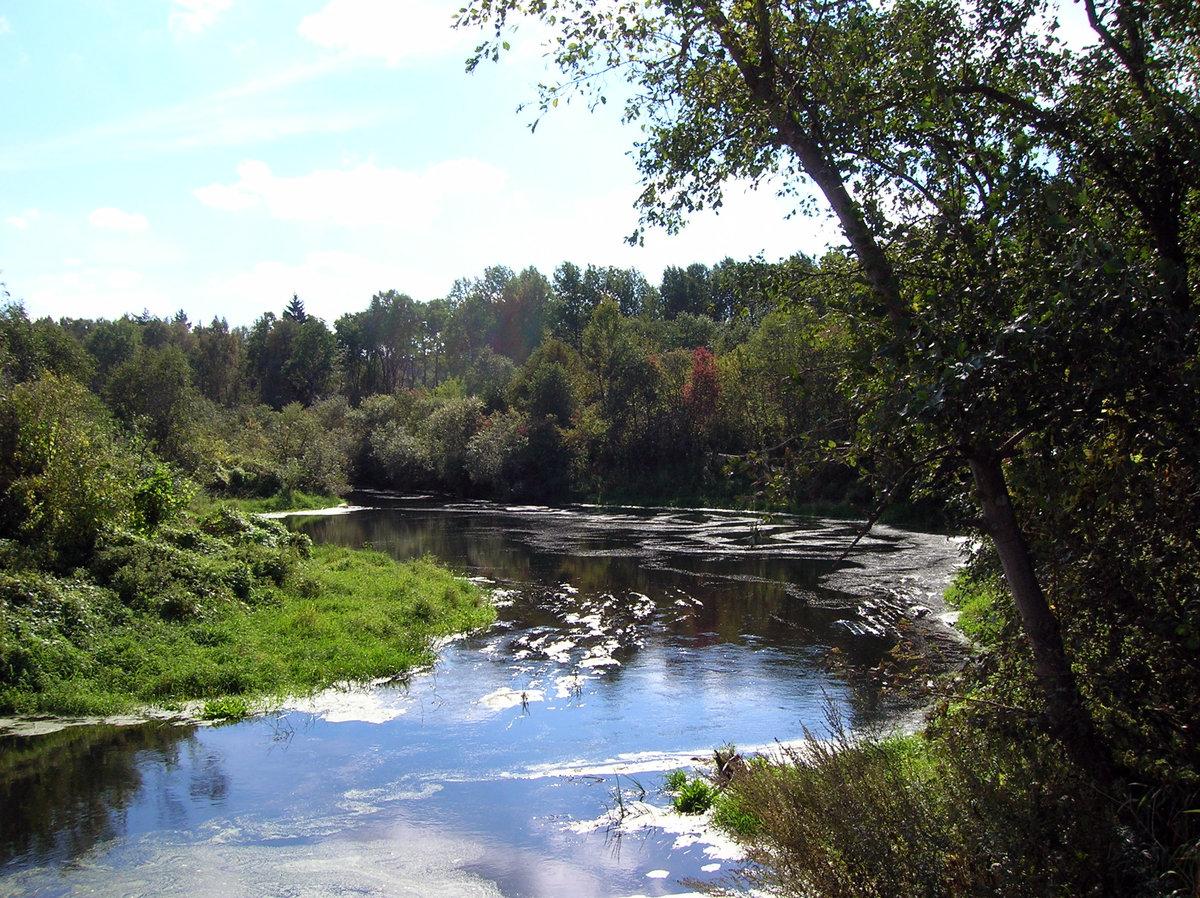 река яхрома картинки ружья
