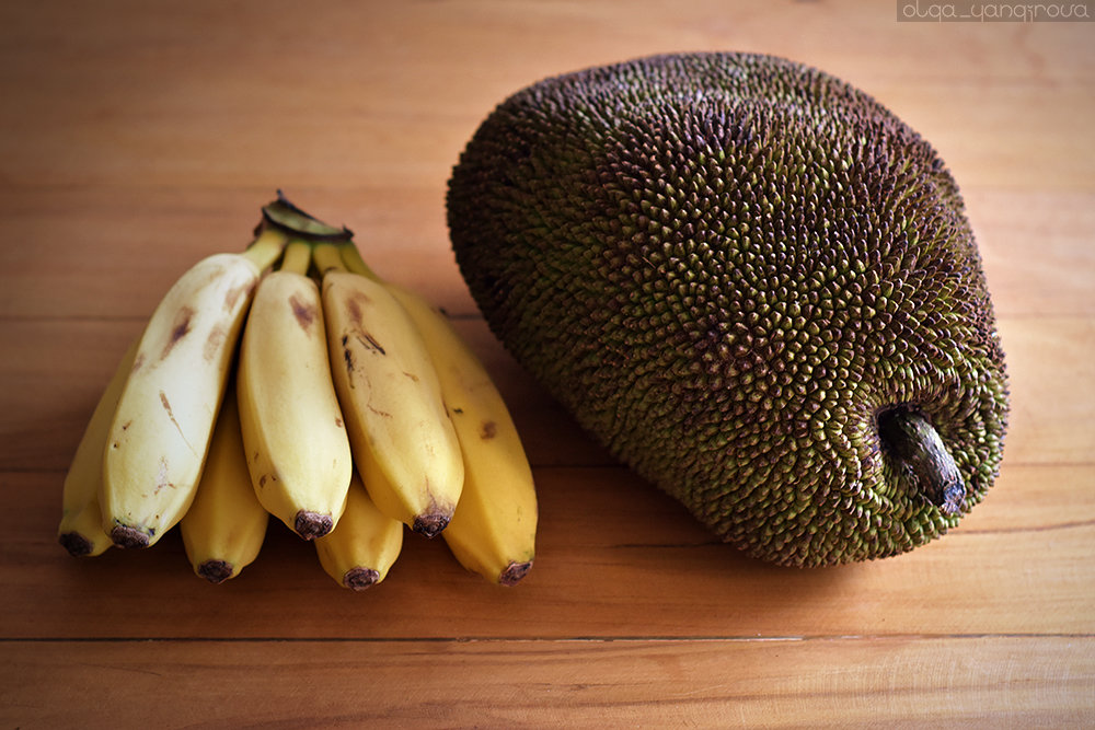 jackfruit investigatory project This instructable will show you the easiest way to cut open a jackfruit and extract the tasty yellowish bulbs did you make this project share it with us.
