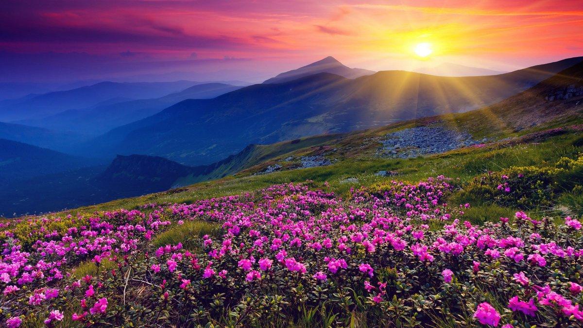 Красивые картинки природы фото — img 12