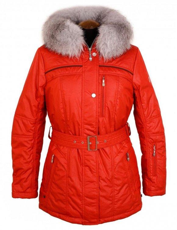 Картинки куртки женские зимние