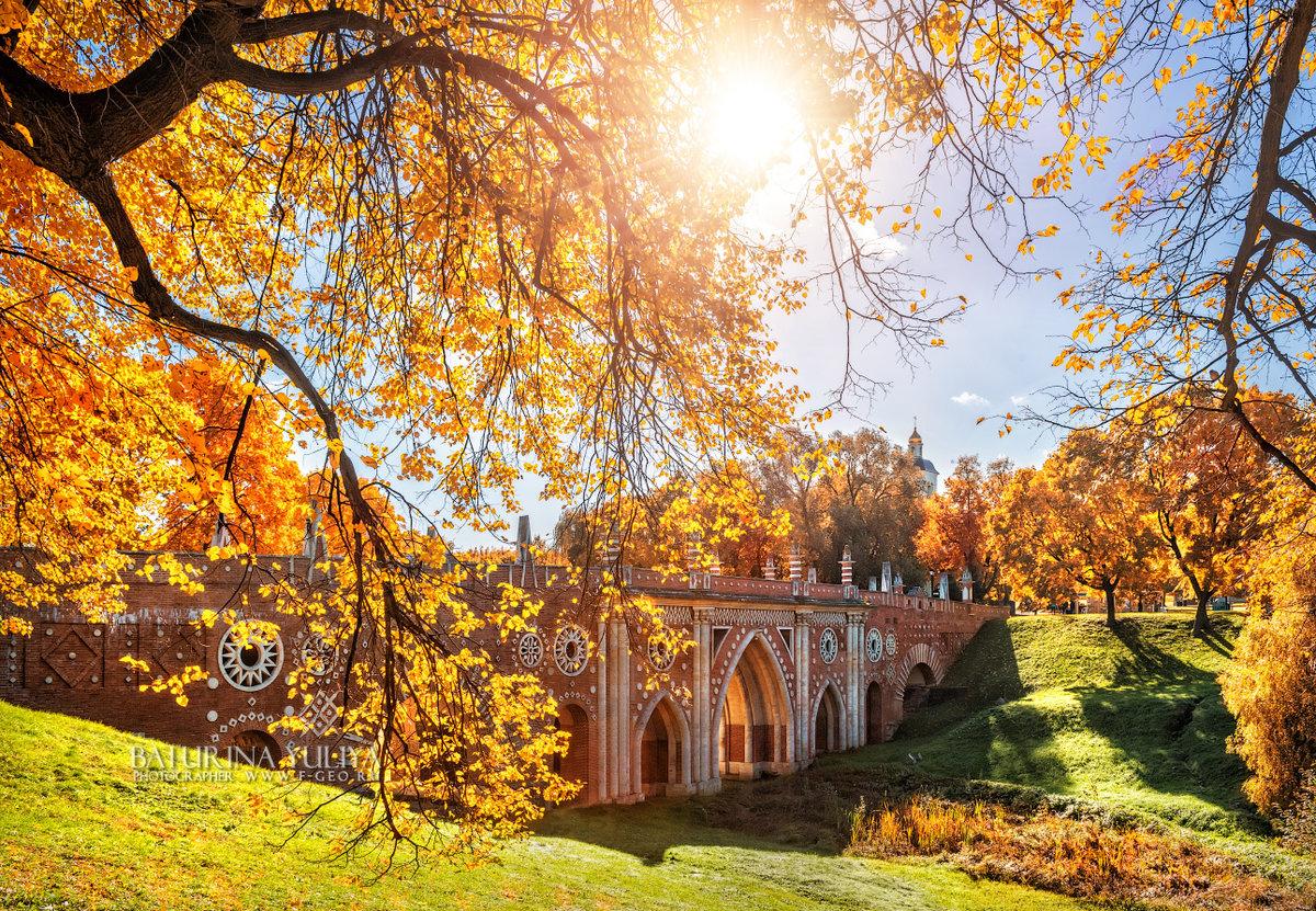 Красивые осенние места для фотосессии в москве