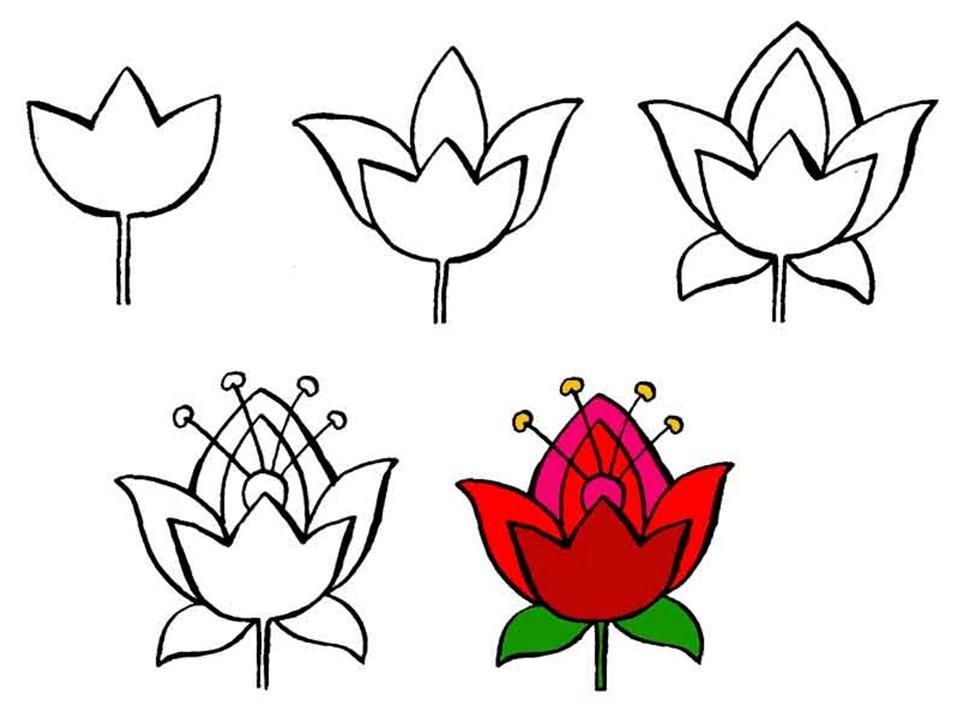 схема рисования цветов для детей