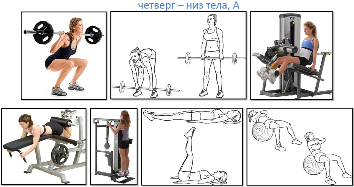 Схема Для Похудения В Спортзале.