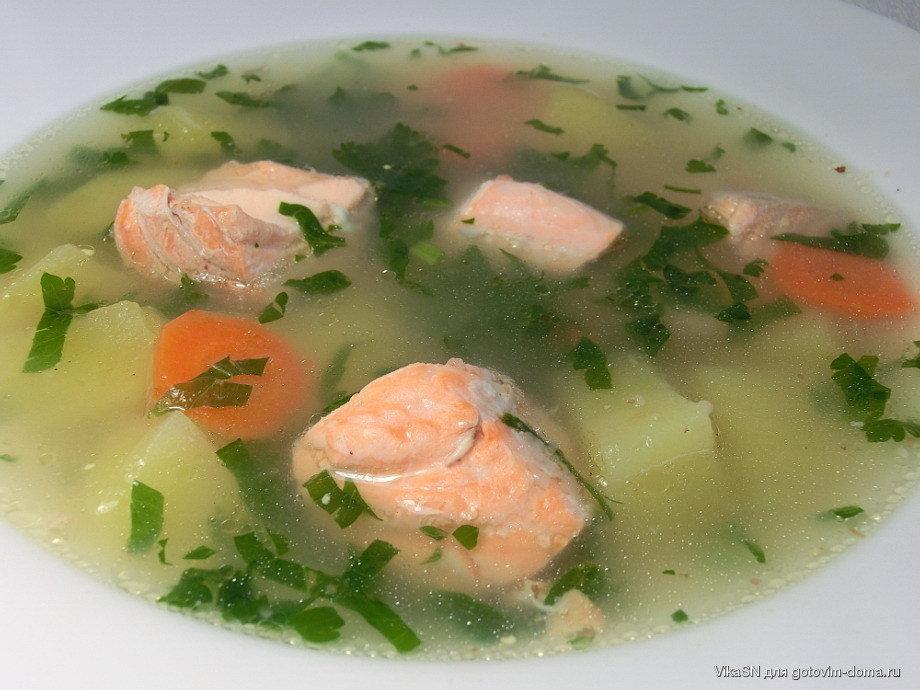 народной суп из головы форели рецепт с фото вот