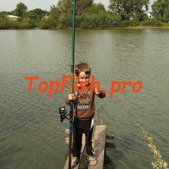 Активатор клева для рыбной ловли для леща своими руками ⇩. http ...