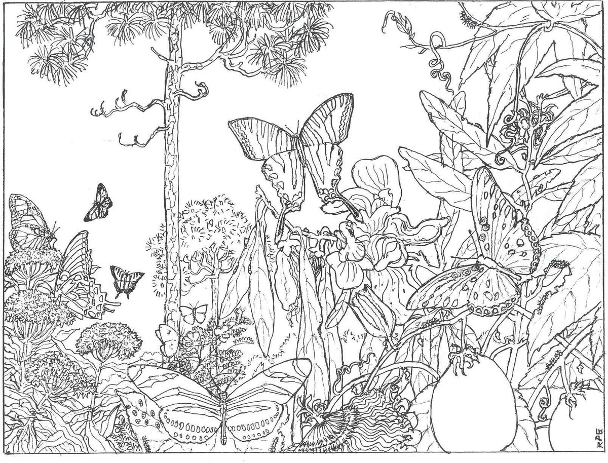 beautiful garden coloring page free printable coloring pages - HD1200×914
