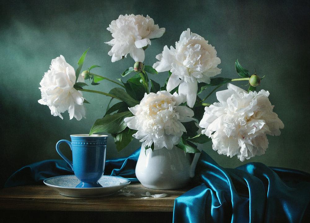 патологию чаще фото натюрморты с белыми цветами этой статьи узнаете