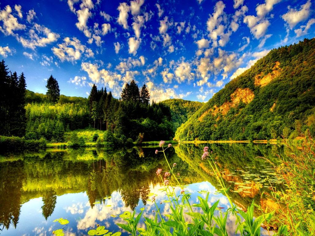 Красивое летнее место