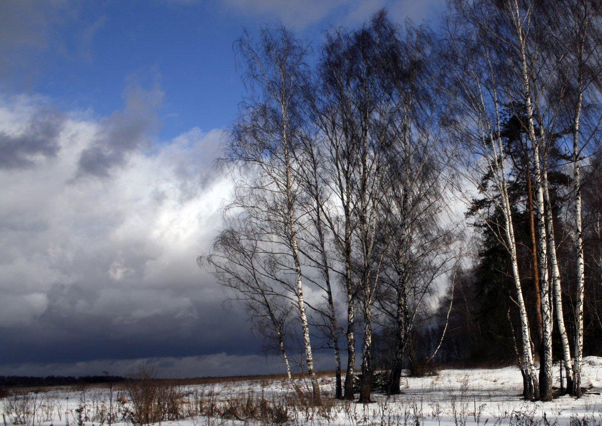 Картинки холодные ветры