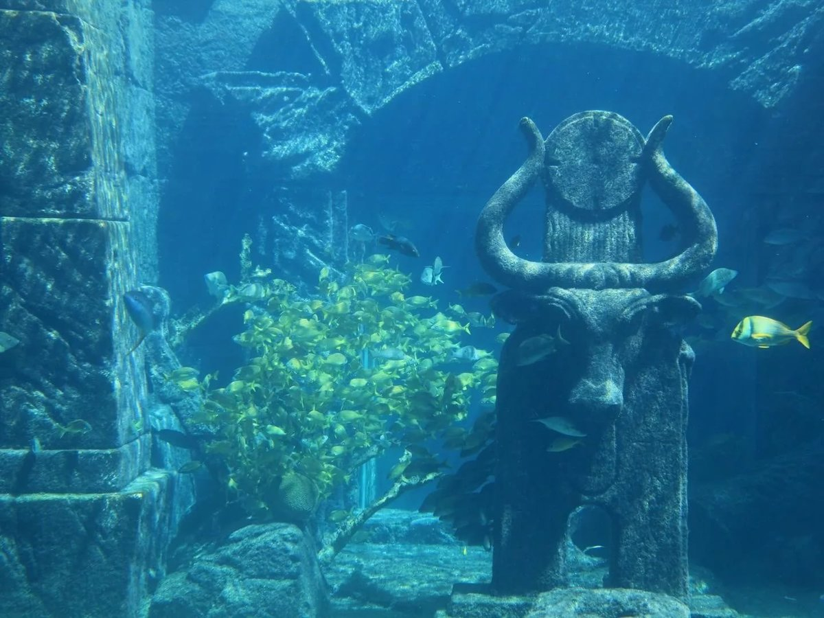a research on atlantis the forgotten city of the deep Experts trace a forgotten ancient pathway to stonehenge layers and reveal a hidden city deep below lostworldsseries104of13atlantisdvdrip.