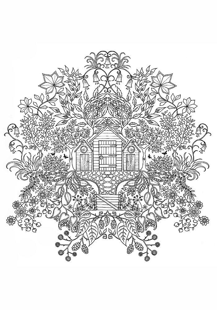 Раскраска джоанны басфорд зачарованный лес образцы раскраски