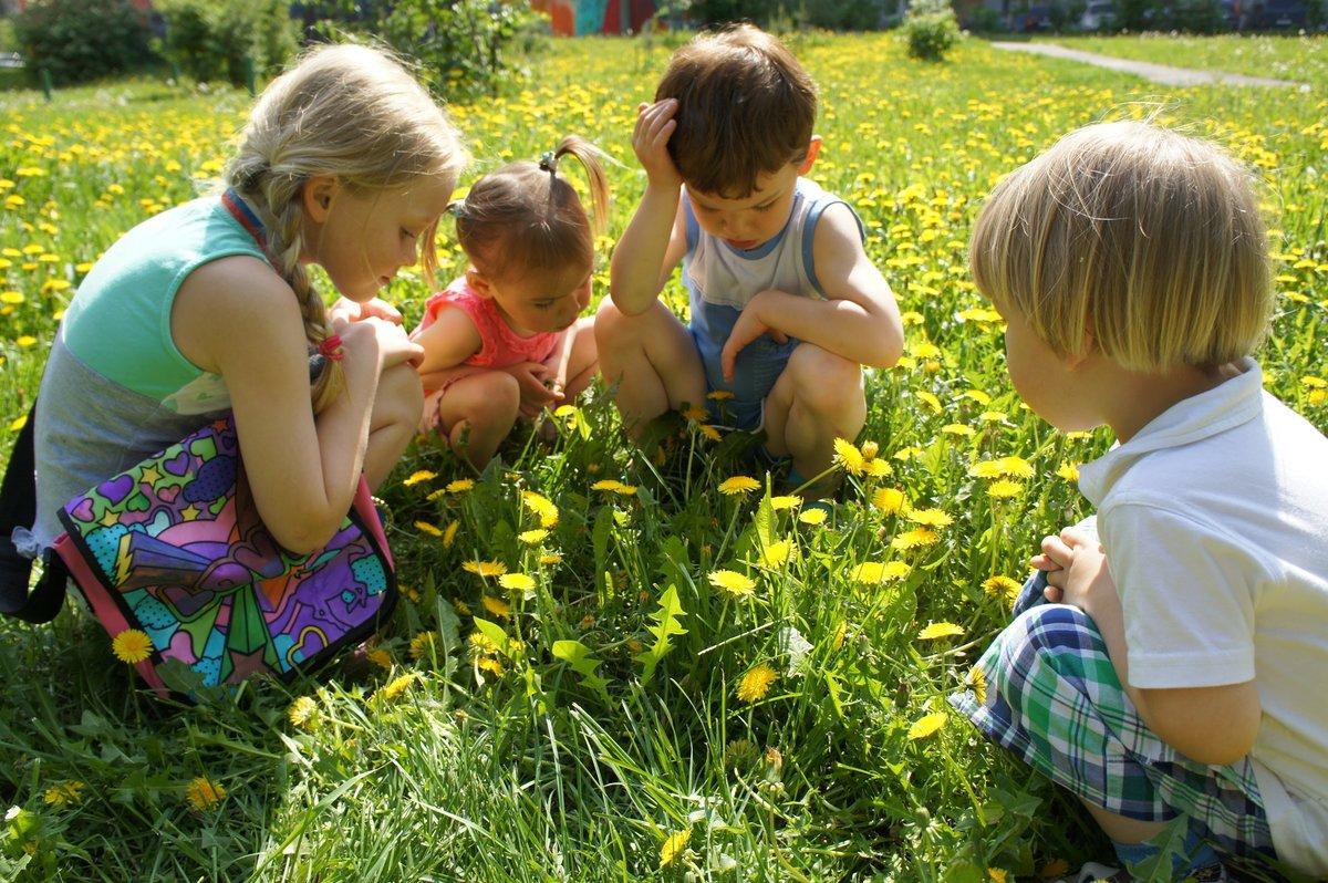 Картинки про лето с детьми красивые