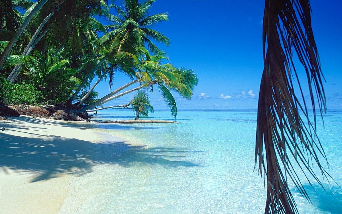 заражения встречается фото островов на экран телефона домовладение