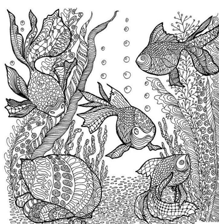 Раскраска животные птицы насекомые рыбы