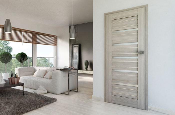 дизайн межкомнатных дверей в квартире фото 7