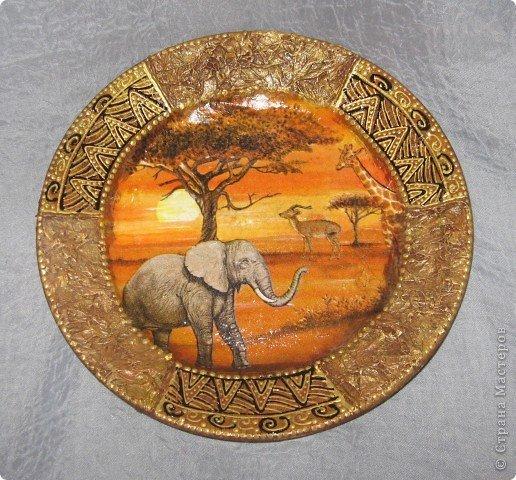 Круглые картинки африка