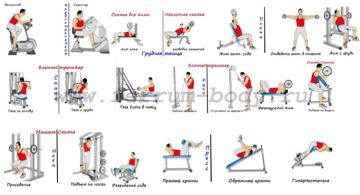 Программа тренировок в тренажерном зале для похудения